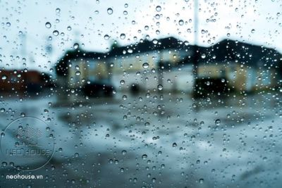 Tác Hại Của Độ Ẩm Và Sự Ngưng Tụ Hơi Nước Trong Nhà